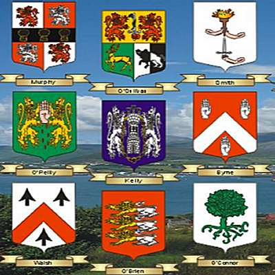 1000 Free To View Irish Coats Of Arms And Name Histories