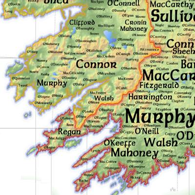 100 Irish Surnames ExplainedIrish GenealogyIrish Coats Of Arms