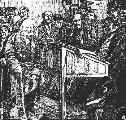 Irish Peasant in Court
