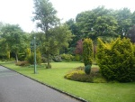 Formal-Garden-with-Conifers