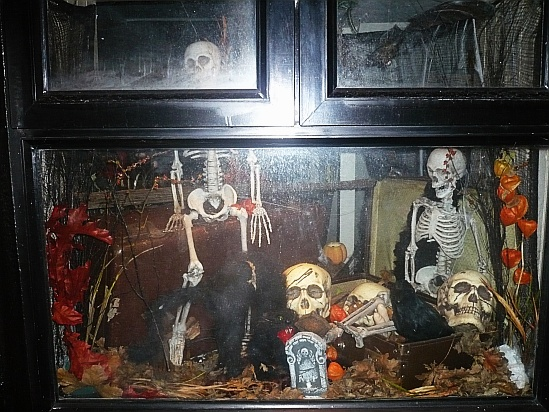 Halloween window - Public Domain Photograph