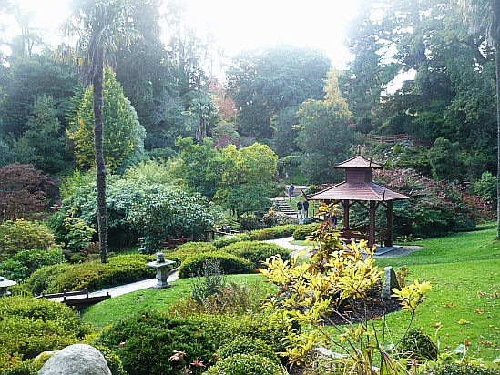 Japanese Garden Powerscourt - Public Domain Photograph, Free Stock Photo Image, Free Picture