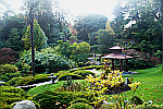 Japanese-Garden-Powerscourt