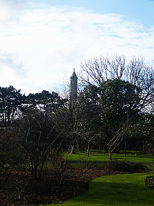Tower behind trees - Public Domain Photograph