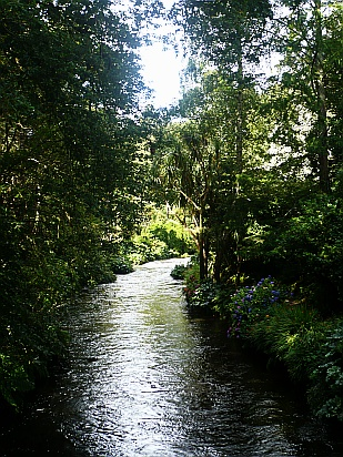 Beautiful river in sunlight - Public Domain Photograph