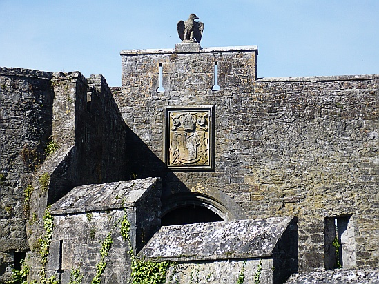 Cahir castle with eagle - Public Domain Photograph, Free Stock Photo Image, Free Picture