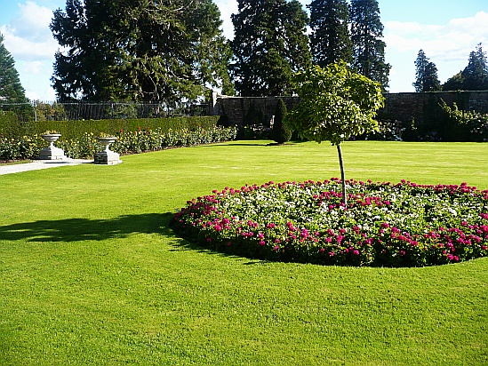 Circular flowerbed - Public Domain Photograph, Free Stock Photo Image, Free Picture