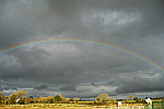 rainbow-in-grey-sky