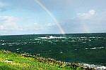 rainbow-in-sea